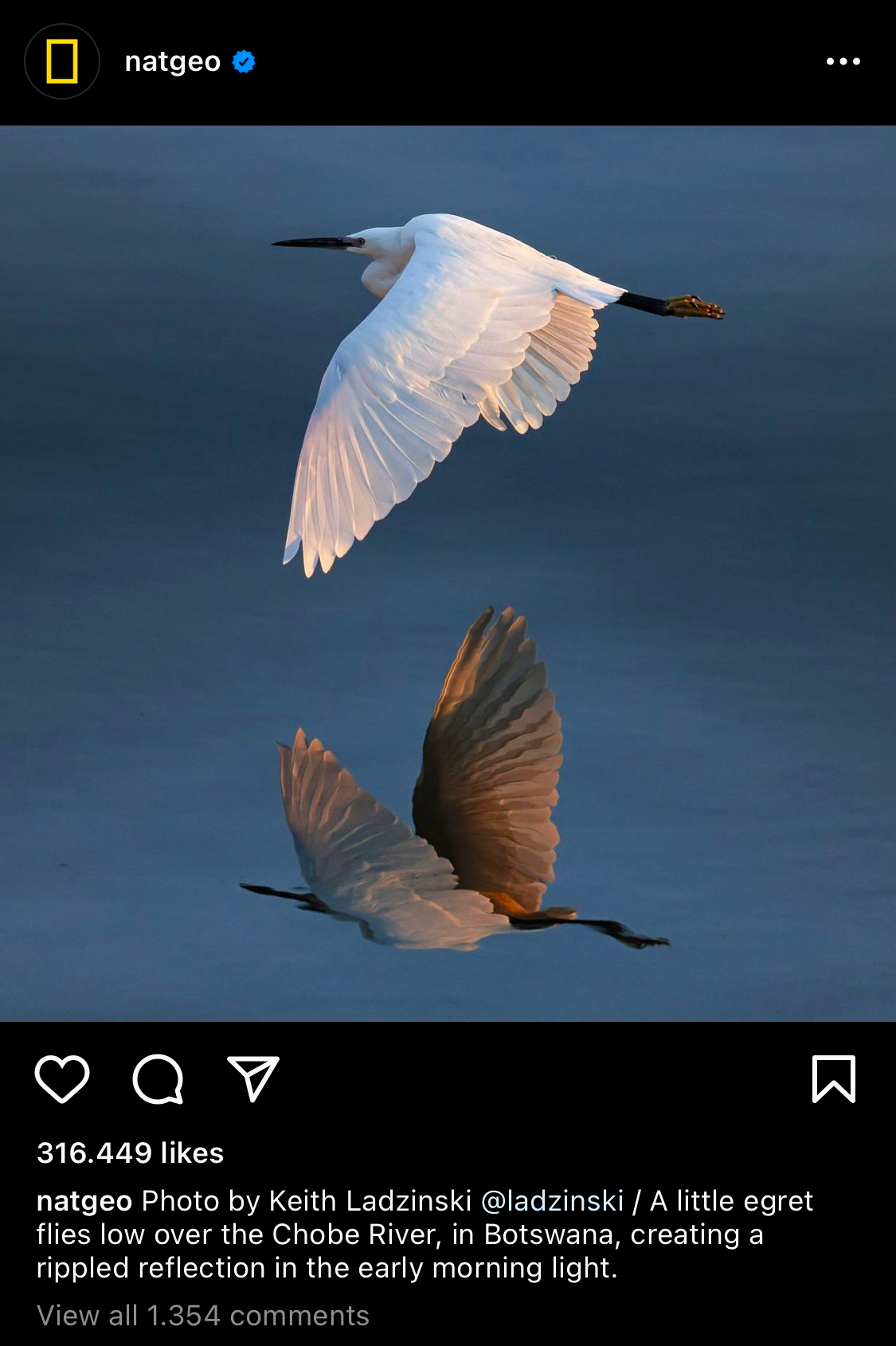 To optimize your content with the ideal Instagram image size for the square format, we suggest you follow 1080px x 1080px in size.