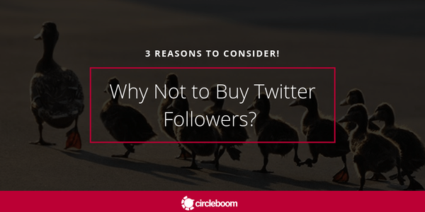 Why Not to Buy Twitter Followers? 3 Reasons to Consider!