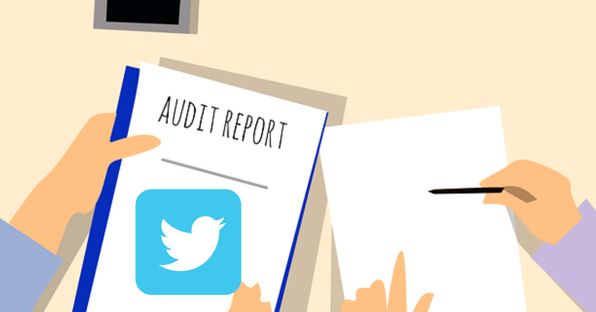 Learn how many Fake Followers you have with this Twitter Audit Tool